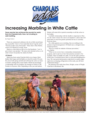 Increasing Marbling in White Cattle