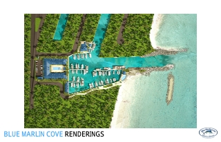 BLUE MARLIN COVE RENDERINGS
