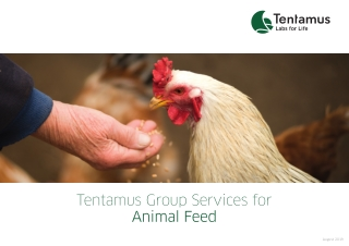 Tentamus Group Services for
