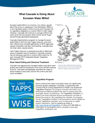 What Cascade is Doing About Eurasian Water Milfoil