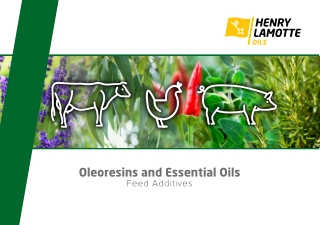 Oleoresins and Essential Oils