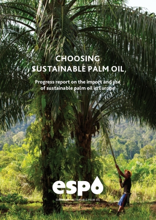 CHOOSING SUSTAINABLE PALM OIL