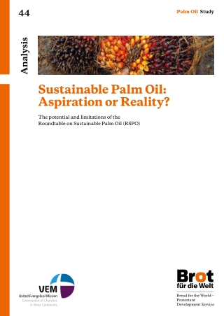 Sustainable Palm Oil: Aspiration or Reality?