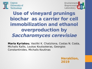 Use of vineyard prunings biochar as a carrier for cell immobilization and ethanol overproduction by Saccharomyces cerevisiae