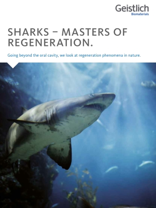 SHARKS – MASTERS OF REGENERATION.