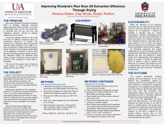 Improving Riceland's Rice Bran Oil Extraction Efficiency Through Drying