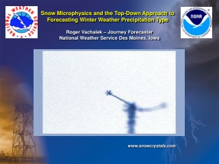 Snow Microphysics and the Top-Down Approach to