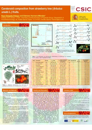Carotenoid composition from strawberry tree (