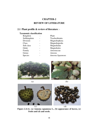 CHAPTER-2 REVIEW OF LITERATURE 2.1 Plant profile & review of literature