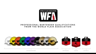 PROFESSIONAL BARTENDER QUALIFICATIONS FROM THE WORLD FLAIR ASSOCIATION
