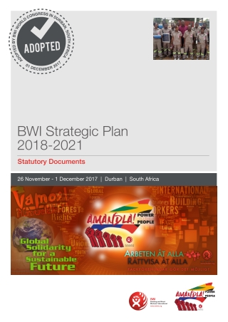 BWI Strategic Plan 2018-2021