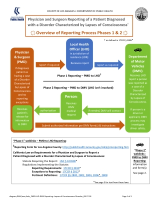 ҉ Overview of Reporting Process Phases 1 & 2 ҉