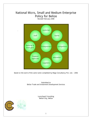 National Micro, Small and Medium Enterprise Policy for Belize