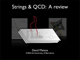 Strings & QCD: A review