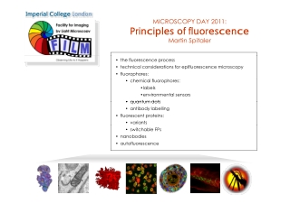 Principles of fluorescence Principles of fluorescence