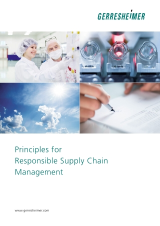 Principles for Responsible Supply Chain Management