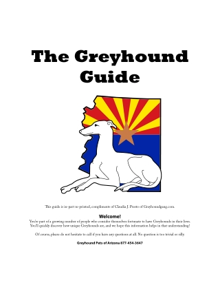 The Greyhound Guide