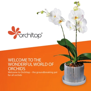 WELCOME TO THE WONDERFUL WORLD OF ORCHIDS