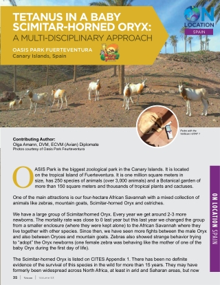 TETANUS IN A BABY SCIMITAR-HORNED ORYX: A MULTI-DISCIPLINARY APPROACH