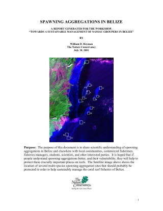 SPAWNING AGGREGATIONS IN BELIZE