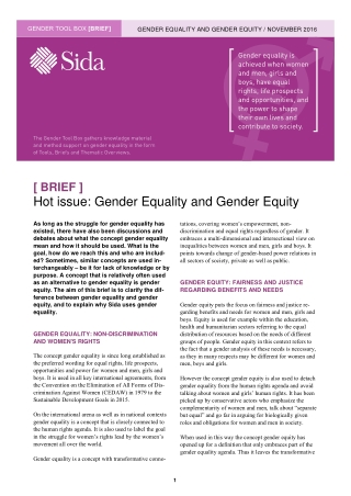 Hot issue: Gender Equality and Gender Equity