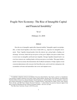 Fragile New Economy: The Rise of Intangible Capital and Financial Instability