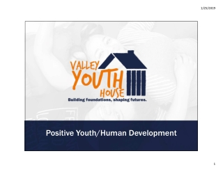 Positive Youth/Human Development