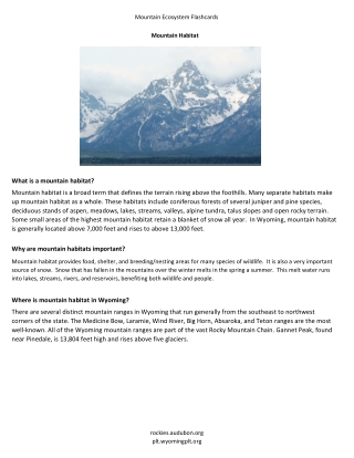 What is a mountain habitat?