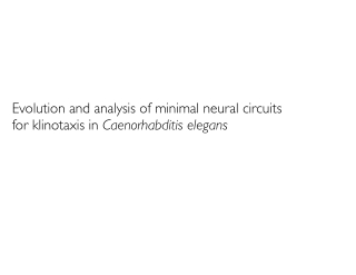 Evolution and analysis of minimal neural circuits for klinotaxis in