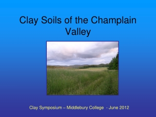 Clay Soils of the Champlain