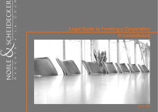 Legal Guide to Forming a Corporation in Luxembourg