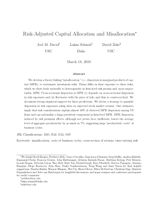 Risk-Adjusted Capital Allocation and Misallocation