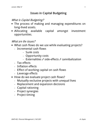 Issues in Capital Budgeting