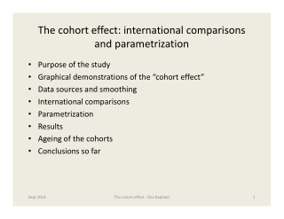The cohort effect: international comparisons and parametrization