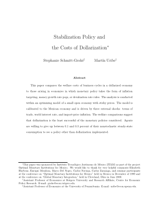 Stabilization Policy and the Costs of Dollarization