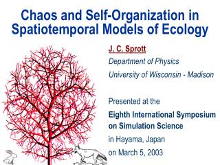 Disarray and Self-Association in Spatiotemporal Models of Nature