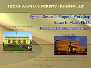 Texas A&M College - Kingsville