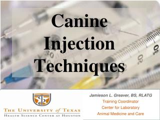Canine Infusion Procedures