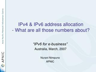IPv4 and IPv6 address portion - What are every one of those numbers about?