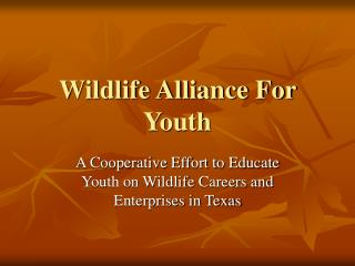 Untamed life Organization together For Youth