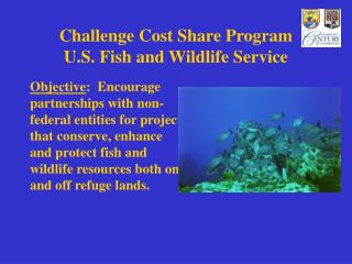 Challenge Cost Offer Project U.S. Fish and Natural life Administration