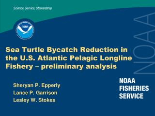 Ocean Turtle Bycatch Decrease in the U.S. Atlantic Pelagic Longline Fishery