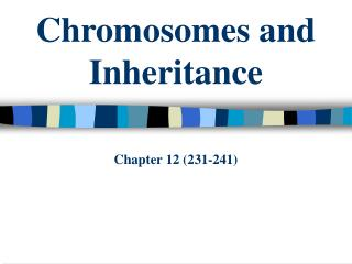 Chromosomes and Legacy Part 12 (231-241)