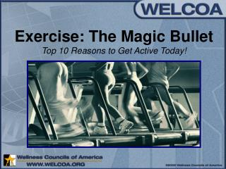 Exercise: The Enchantment Slug Main 10 Motivations to Get Dynamic Today!