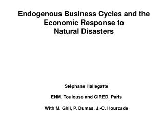 Endogenous Business Cycles and the Financial Reaction to Characteristic Debacles