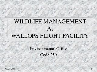 Natural life Administration At Pummels FLIGHT Office