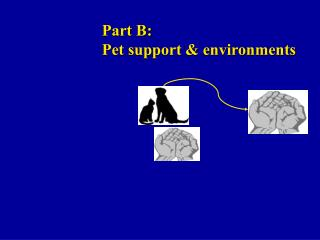 Part B: Pet backing and situations