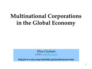Multinational Organizations in the Worldwide Economy