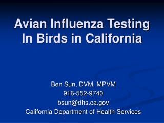 Avian Flu Testing In Feathered creatures in California