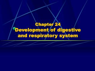 Section 24 Advancement of digestive and respiratory framework